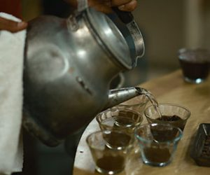 el-lugar-de-donde-viene-un-grano-de-cafe-tambien-afecta